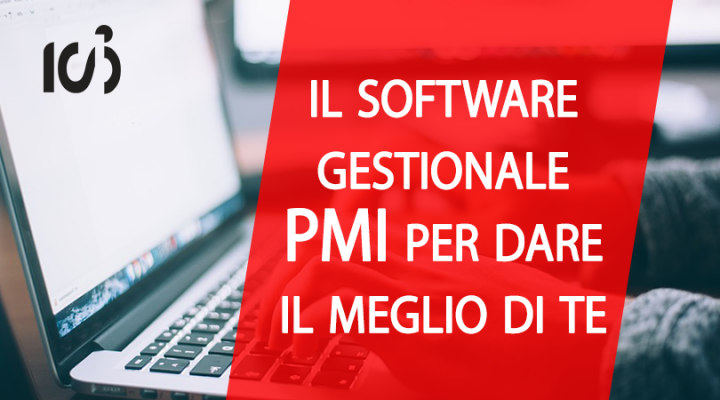 software-gestionale-PMI